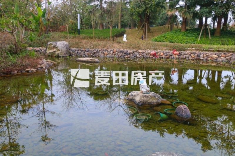 阳光城翡丽湾户型中西结合风格,楼距宽,别墅方别墅茗v户型客图片