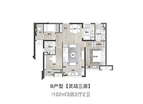 户型B-102㎡三房两厅两卫--户型图